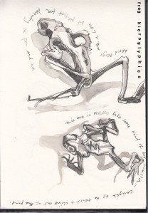 Pen and Ink studies of dried frogs