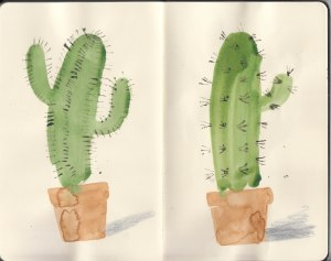 Cacti-Sketchbook_01