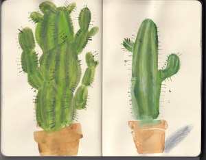 Cacti-Sketchbook_02