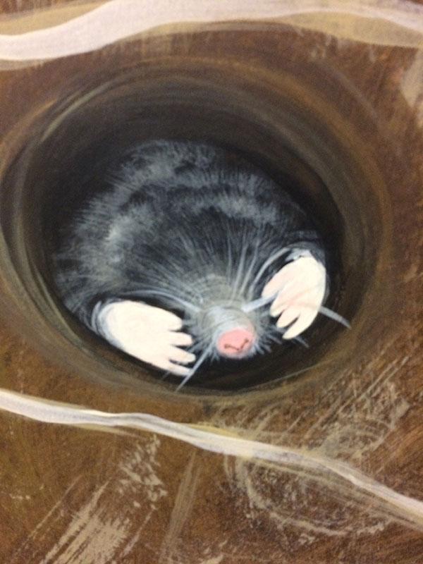 mole-web