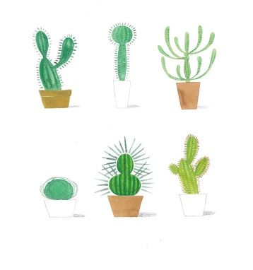 CactusMashUp-2WEB