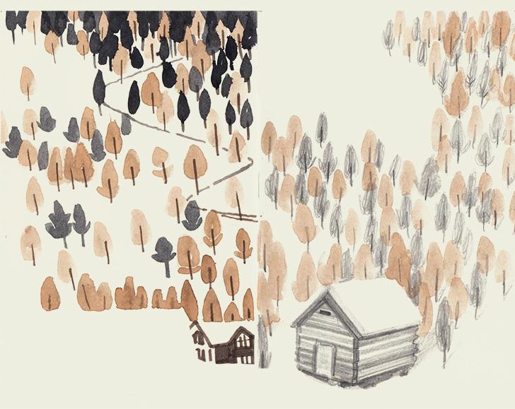 TreePractice-WEB